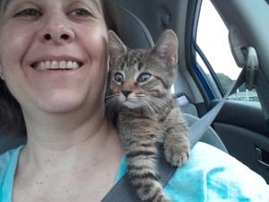 And still a shoulder kitteh