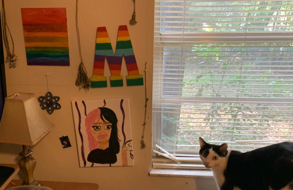 Bedroom wall with art, dried flowers and the blue star hung from a push pi, with a cat looking somewhat guiltily at the camera from the side, as the star is low enough for him to reach it